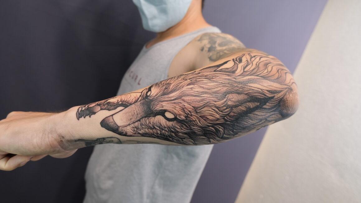 Fredao Oliveira, Inkonink Tattoo Studio, Belo Horizonte, Brazil