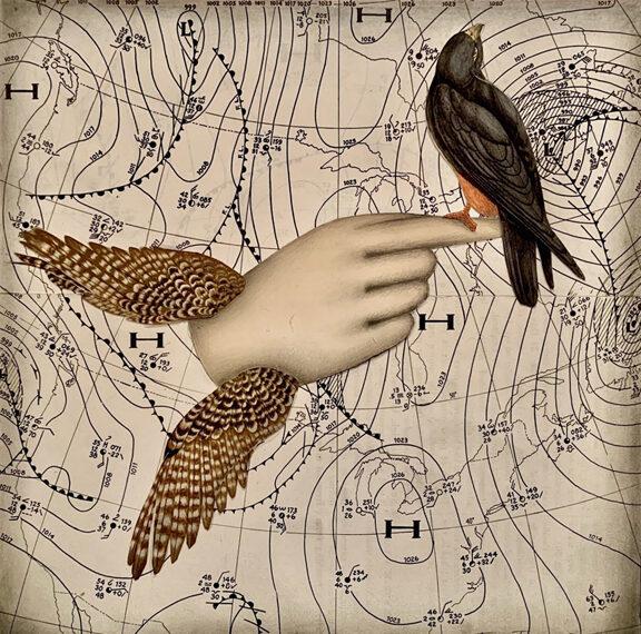 Teresa James, Wings in the Weather